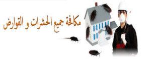 مكافحة حشرات بينبع
